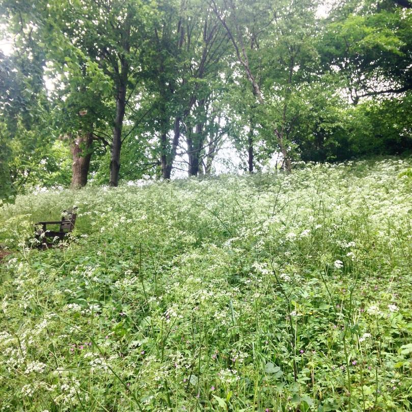Rococo-Garden-37