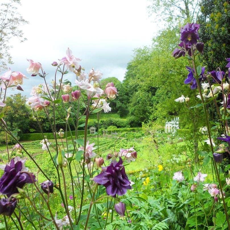 Rococo-Garden-7