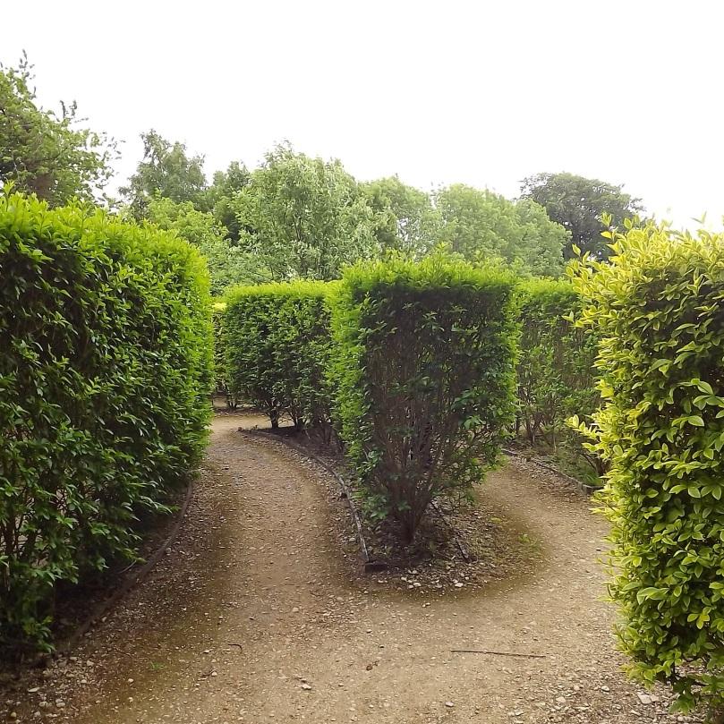 Rococo-Garden-34