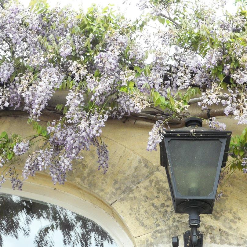 Rococo-Garden-9