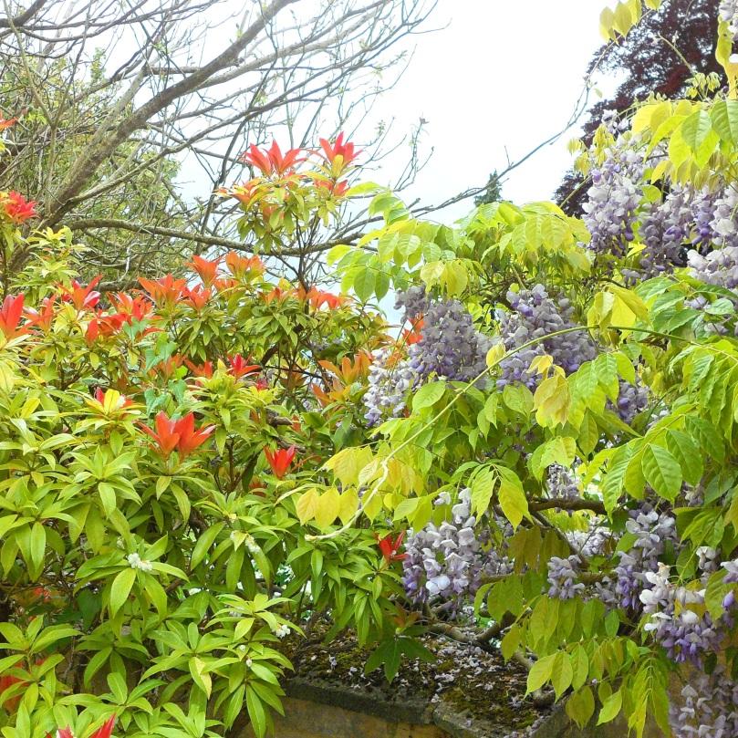Rococo-Garden-3