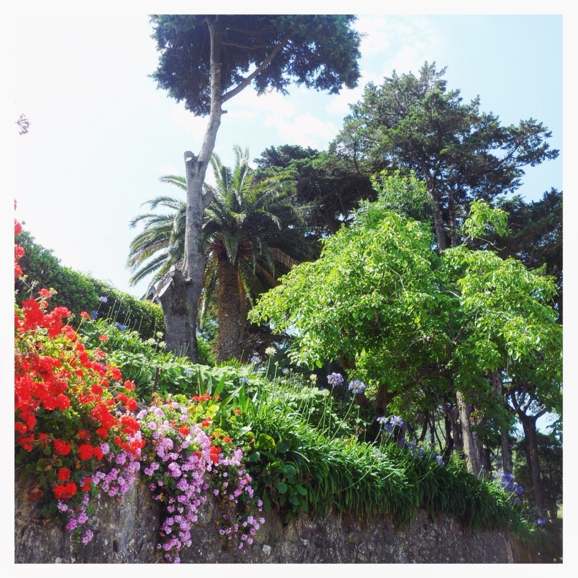one-sunday-in-sintra-7